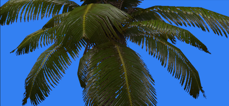 Alpha testing allows us to draw partially-transparent palm fronds